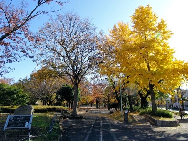 s1-千種公園DSC09002xx64.jpg