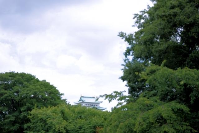 s1-名古屋城170721DSC04459xx64.JPG
