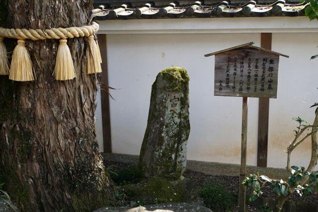 s2-大仙寺170416DSC06070xx64.JPG