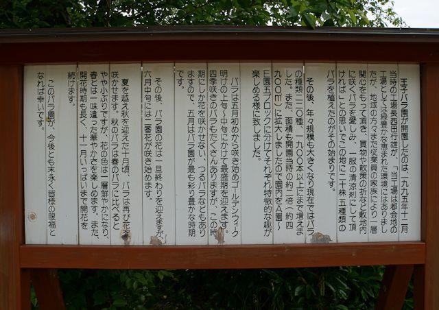 s3-15王子バラ園DSC03907xx64.JPG