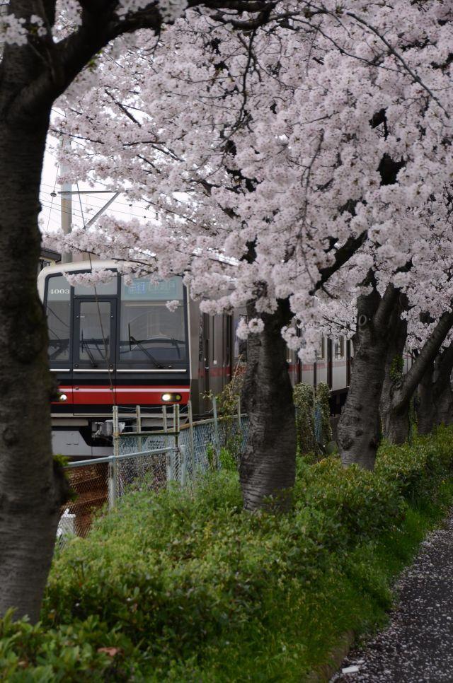 s5-瀬戸線170409_7188xx64.JPG