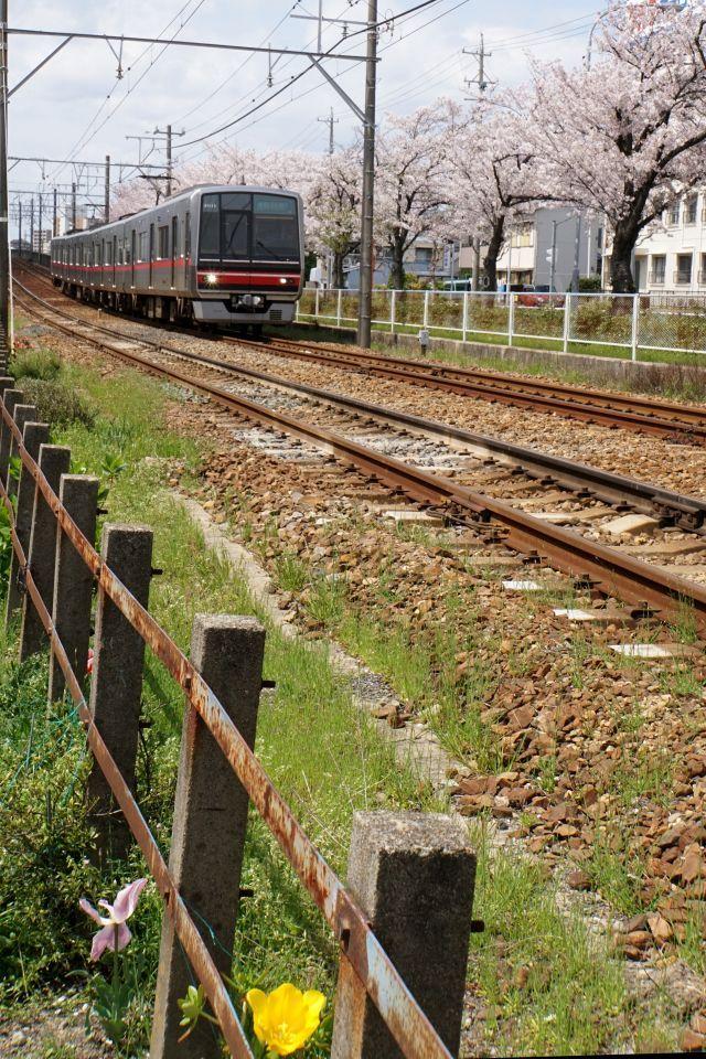 s7-瀬戸線170412DSC05859xx64.JPG