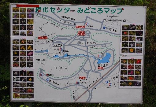 s1-09県緑化センター_8886xx510.jpg